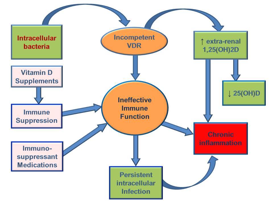 ProcessChronicInflammation